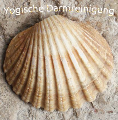 shankprakshalana_yoga_darmreinigung_köln