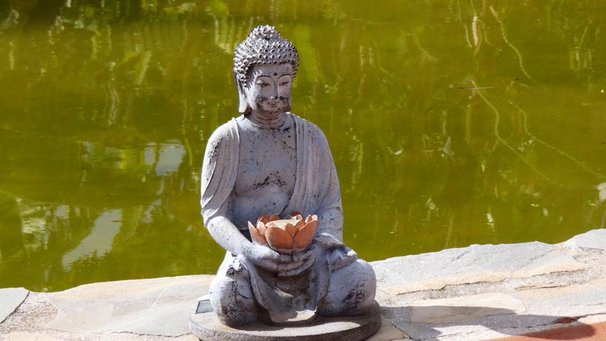 yoga_reise_buddha
