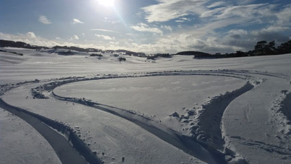 Schneeherz